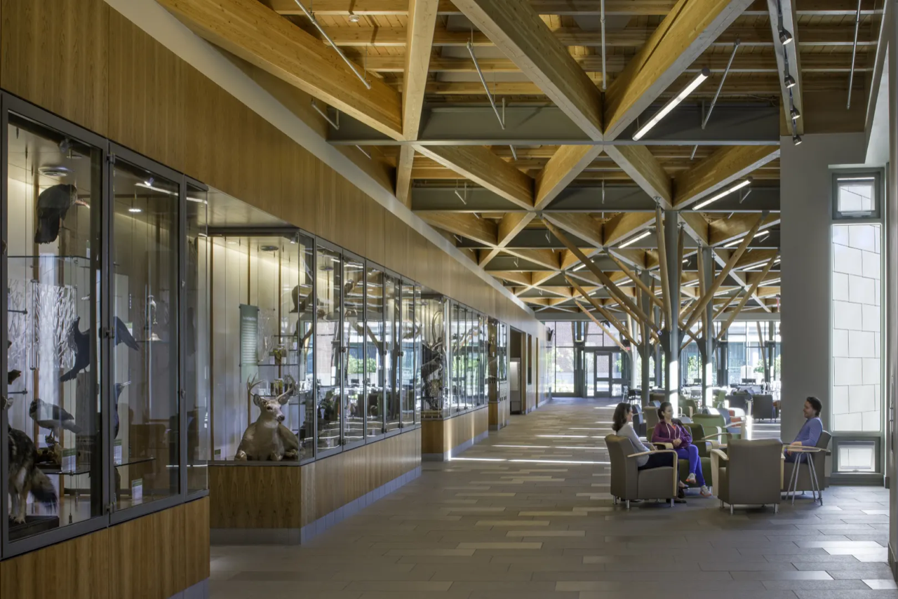 SUNY ESF Gateway Center by Architerra, a 2014 Top Ten recipient. Image by: David Lamb Photography.